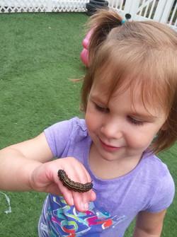 anmarie caterpillar