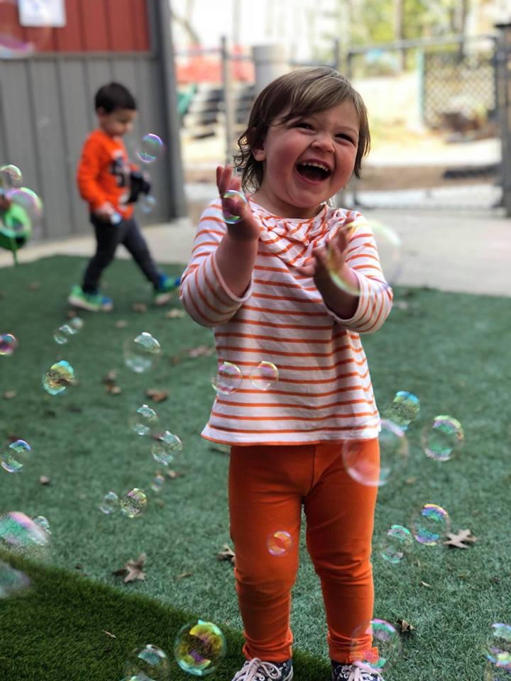 Dahlia Bubbles Spring 2018
