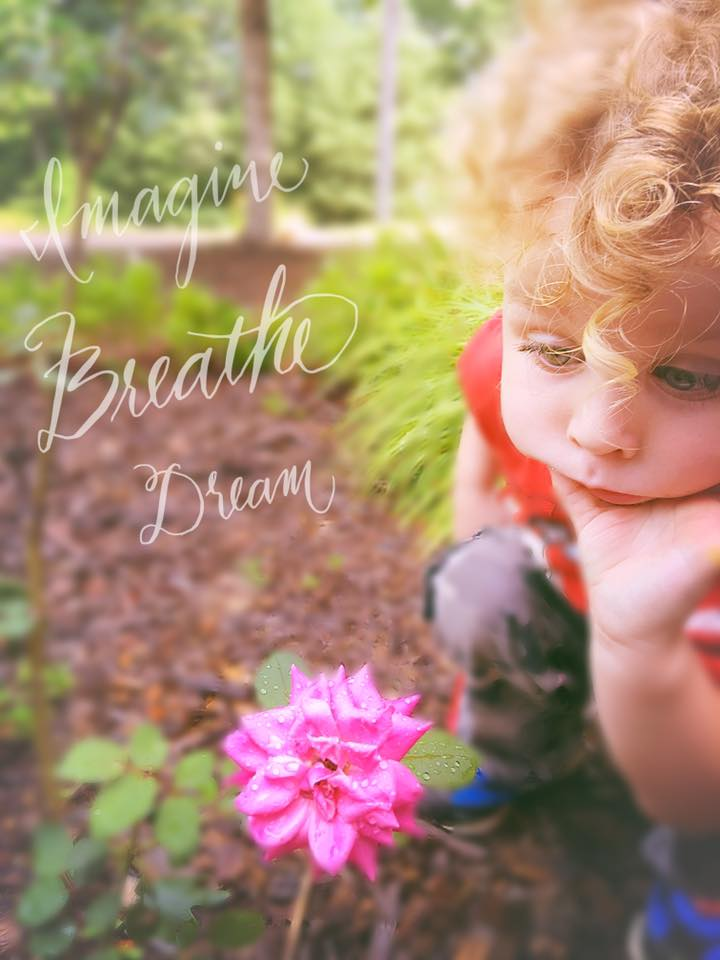 breathe dream