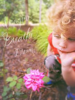 breathe dream