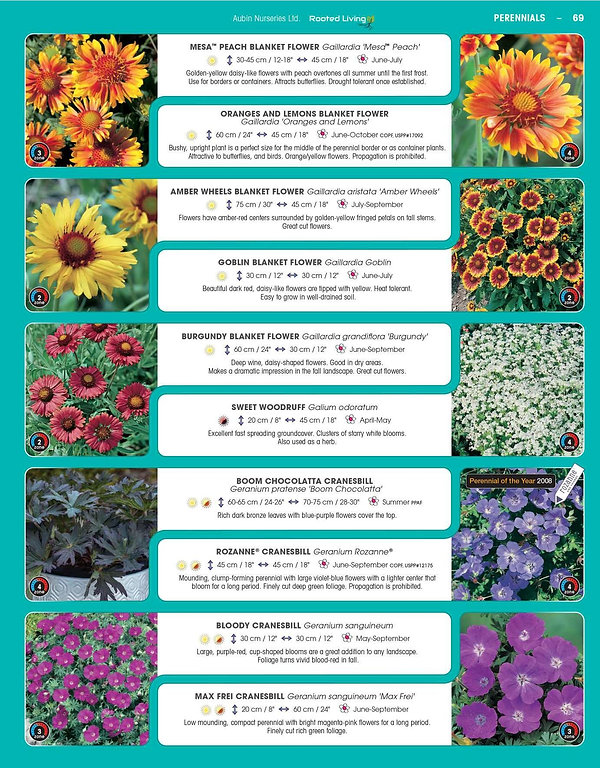Perennials-page-014.jpg