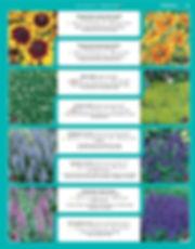 Perennials-page-040.jpg
