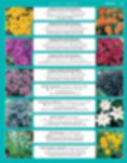 Perennials-page-008.jpg