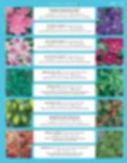 Vines-page-001.jpg