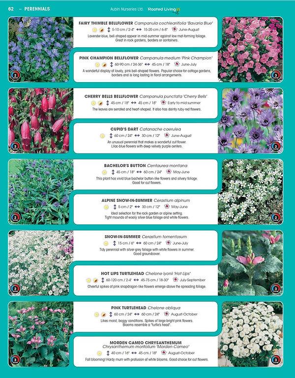 Perennials-page-007.jpg