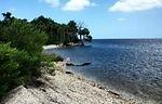 shell island shoreline