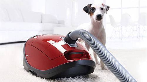 miele pet vacuum