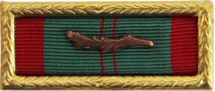 Vietnam Civil Actions Unit Award