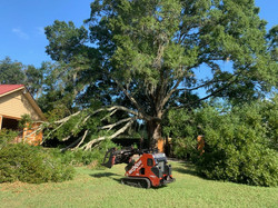 storm damage removal from home