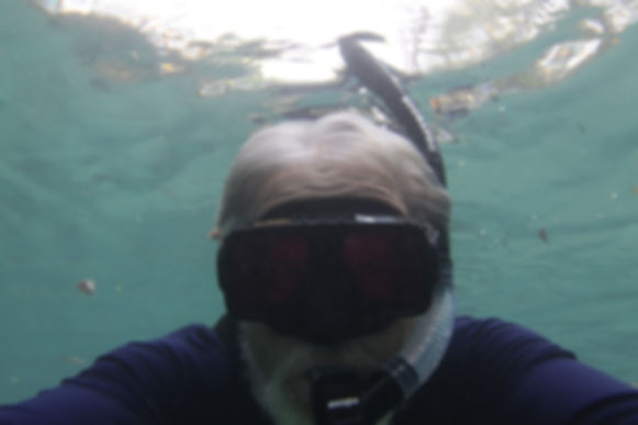 Snorkeling Boat Captain
