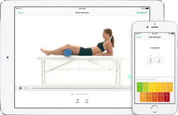 Telehealth and PhysiApp