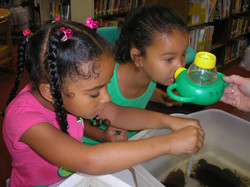 Girls find bugs @ Sprfld Library