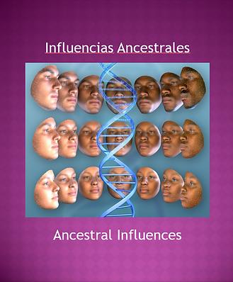 influencias ancestrales.PNG