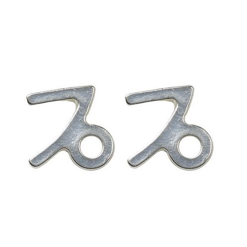 """""""Capricorn"""" Zodiac Earrings"""