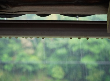 雨ばかりで体調を崩されている方へ。