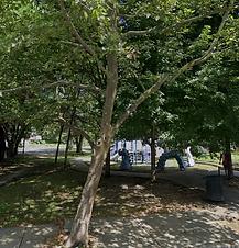 Open Streets: East Trenton