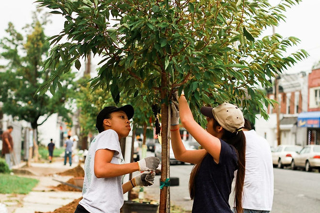 Interested in learning how to care for and prune young trees in your yard? The NJ Tree Foundation will be hosting a pruning party at Mill Hill Park during Ciclovia on September 19th. Participants will learn all about proper pruning techniques and gain hands-on experience by pruning young trees in Mill Hill Park. Attendees will also receive free tools to help prune trees in their own yard. If interested, please email Crystal at cwessel@njtreefoundation.org to sign up, or for any questions.