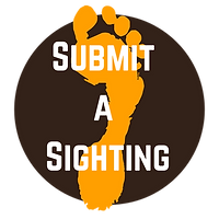 Submit a Sighting (2).png