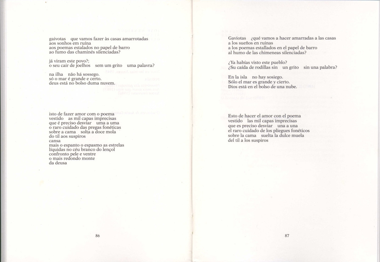 """MALVÍS. - Madrid. - N.º 9/10 (1991). - Contém 2 poemas de """"Itinerário das gaivotas"""" e sua tradução em castelhano por Antón de Castro.  Col. particular Álamo Oliveira"""
