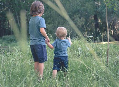 The Little Explorers