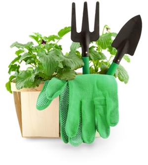 Horticultura.png