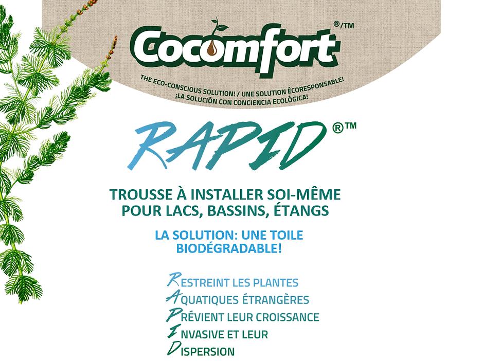 RAPID - 1 Francçais.png