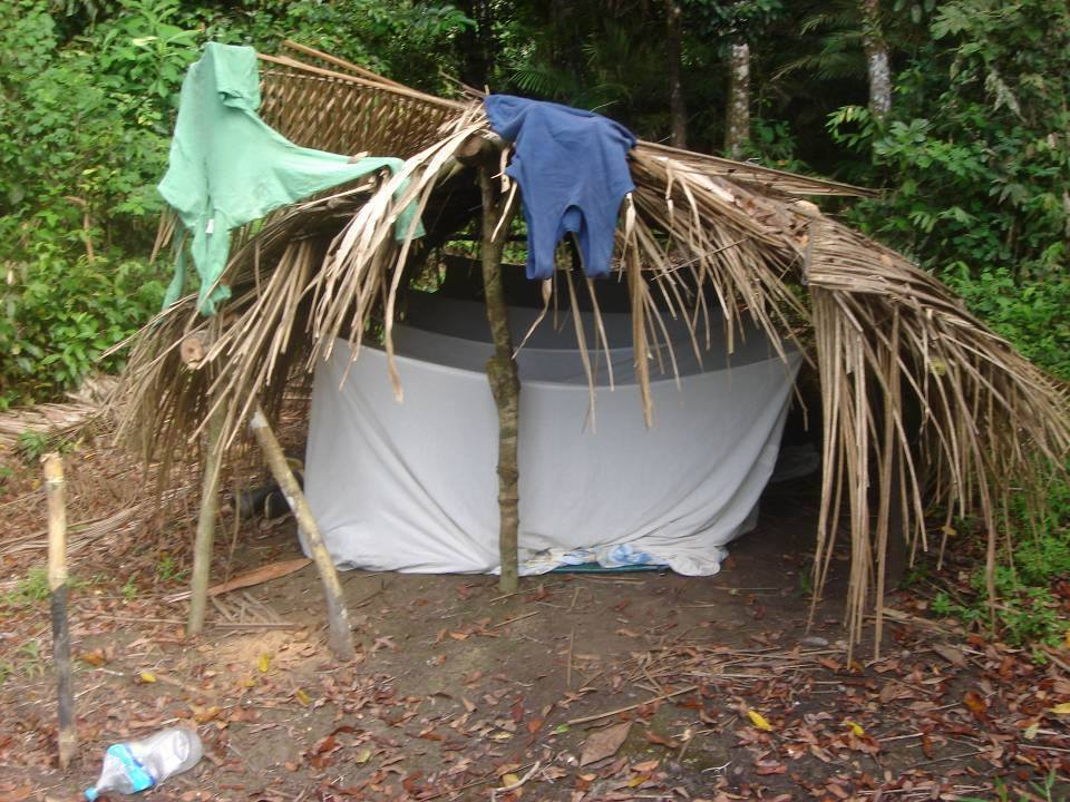 Lodge Amazon