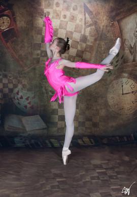 Flamingo P3.jpg