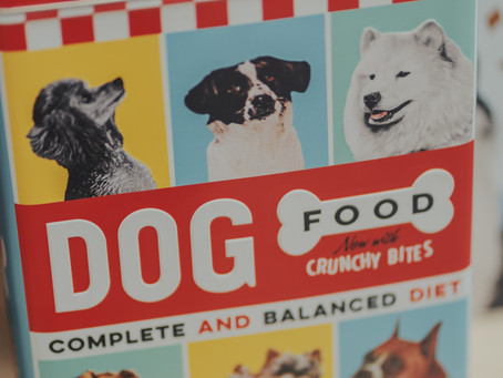 Homemade Dog Food vs. Commercial Dog Food