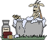 Goat in Tub.png