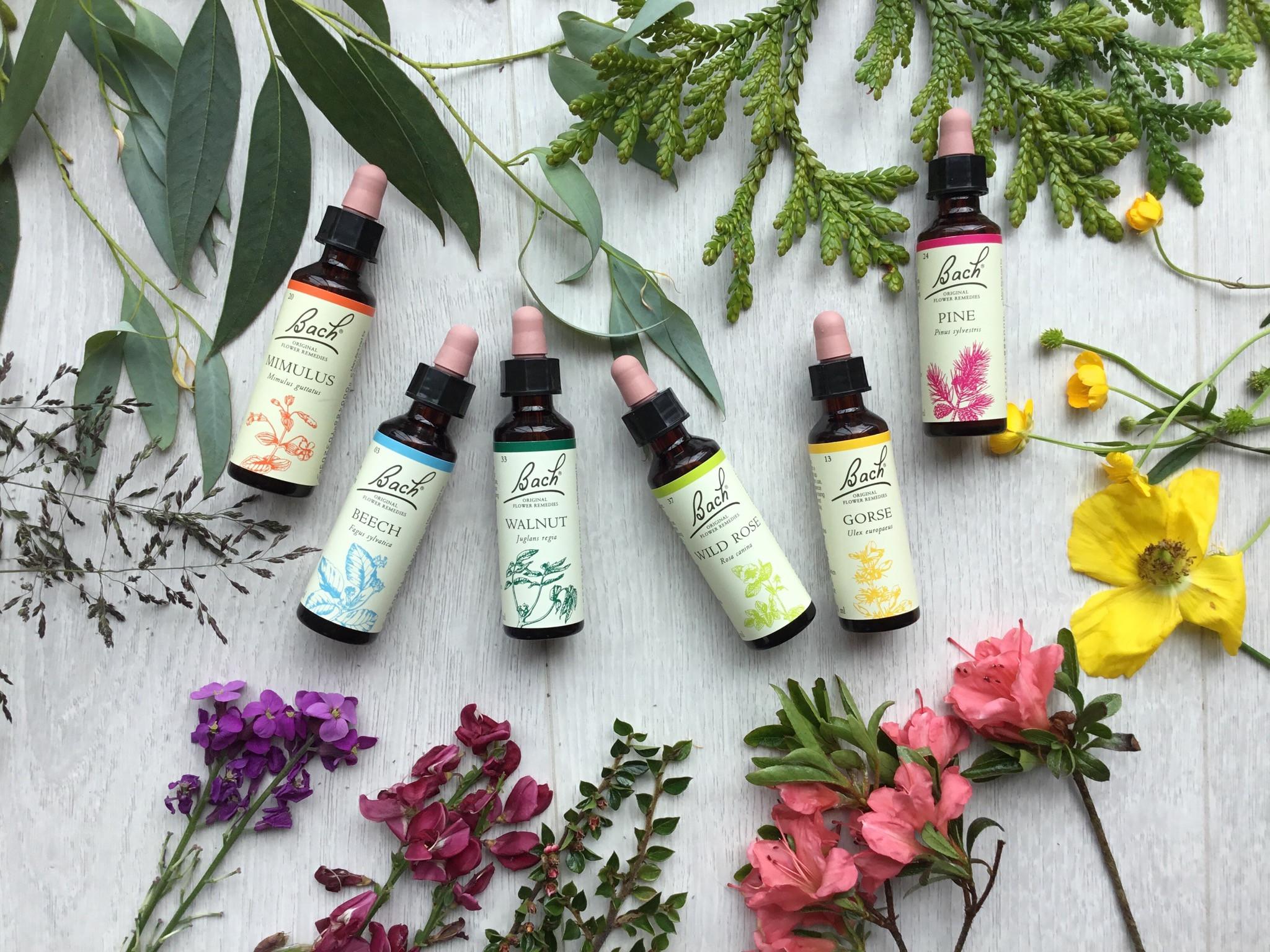 Bach Flower Treatment and Follow Ups