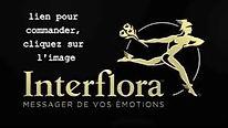 logo%20interflora_edited.jpg