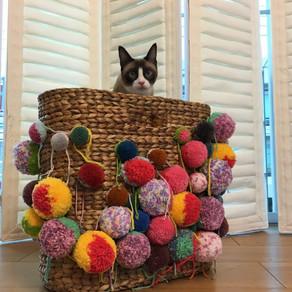 Custom Pom-Pom Basket