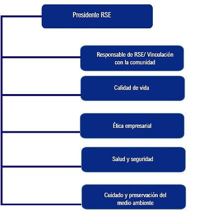 Estructura RSE.JPG