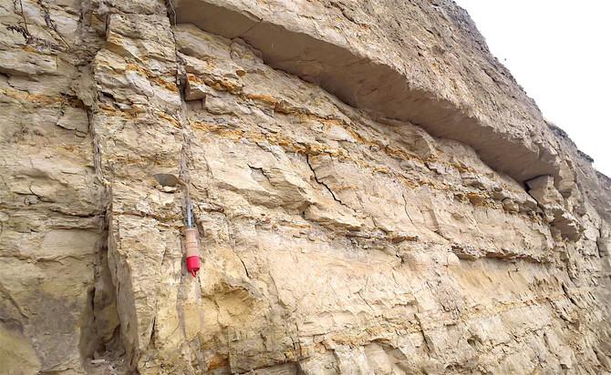 Where is the Neogene Seismic Record for the Yakima Fold Belt?