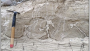 Sanpoil-style Syn-sedimentary Deformation