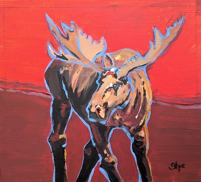 Moose in Blue