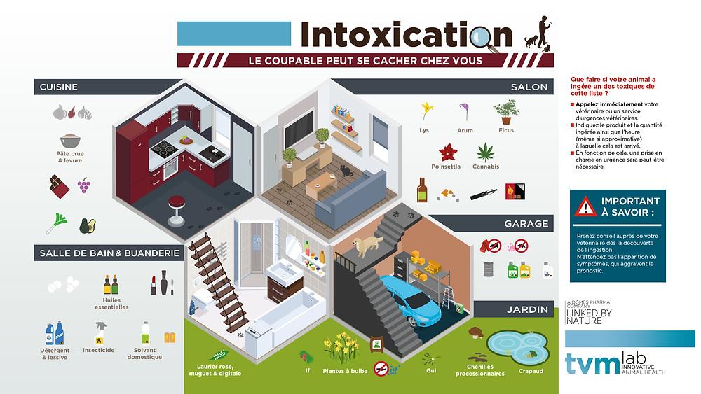 intoxication vetolac urgences