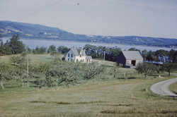 ORCHARD 1968