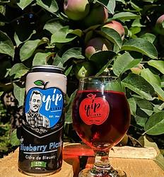 Blueberry Picnic Cider