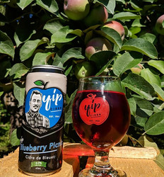 Blueberry Picnic Cider