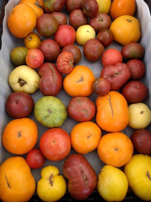 Amazing Tomatoes - mixed box