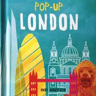 Pop-up_london_COV_edited_edited.jpg