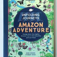 Unfolding journeys Amazon COV.jpg