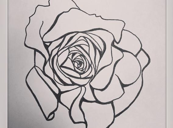 Rose by Heather Warren