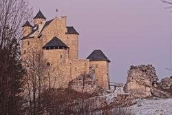 Zamek Bobelice