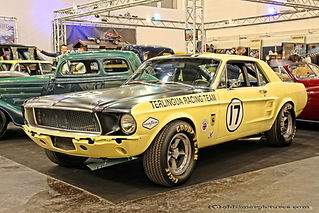 Ford Mustang Shelby Terlingua Tribute - 1965