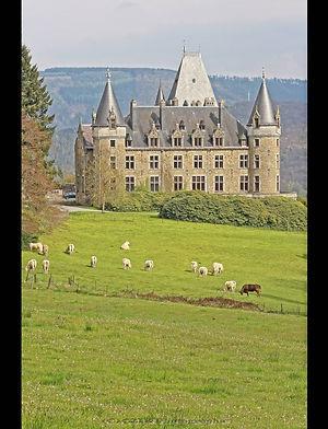 Château de Froidcour