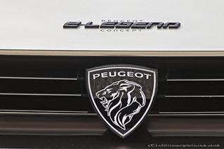 Peugeot E-Legend Concept - 2018