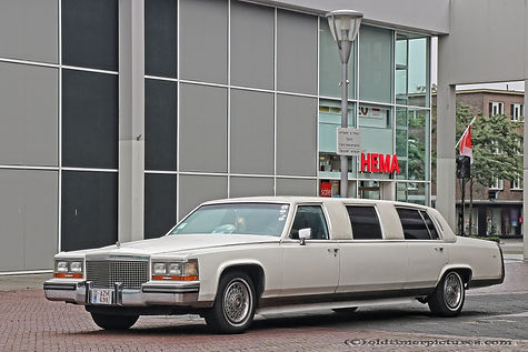 Cadillac Fleetwood Limousine - 1980
